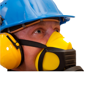 Pittsburgh Mold Removal