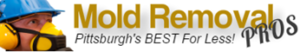 Pittsburgh Mold Removal Pros Logo